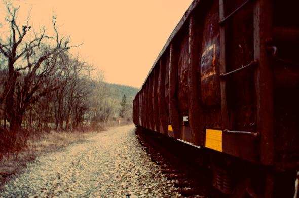 rl train
